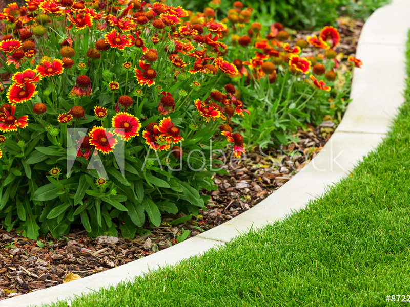 Flower Bed Care