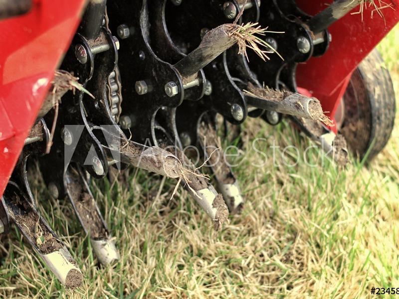 Lawn Aeration Seeding