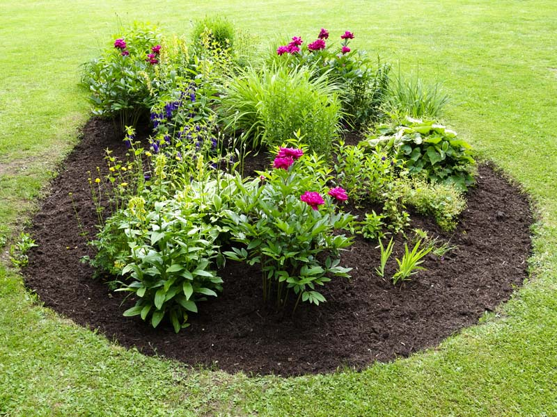 flower bed weed prevention