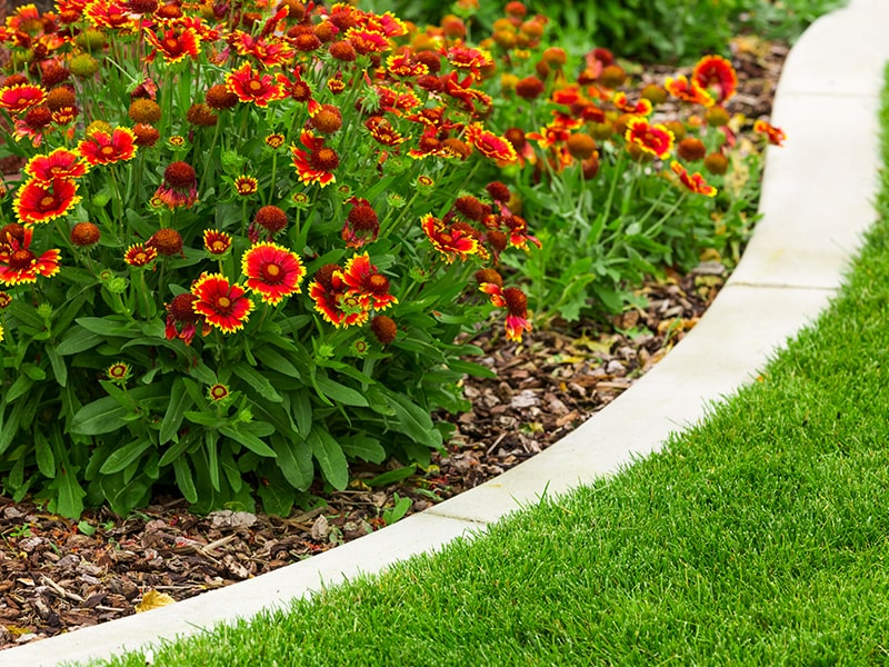 Flower Bed Care Home